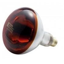 250 watts Heat Lamp Bulb